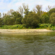 Stock Photo: Panoramriver