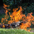 Camp fire — Stock Photo #30718335