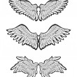 Set of Wings, vector — Vector de stock