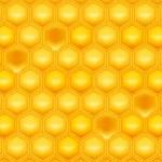 Honeycomb, vector — Stock Vector