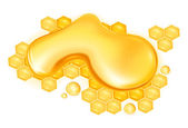 Drop of honey, vector — Stock Vector