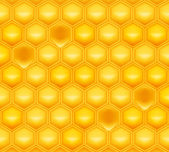Honeycomb, vector — Stock Vector