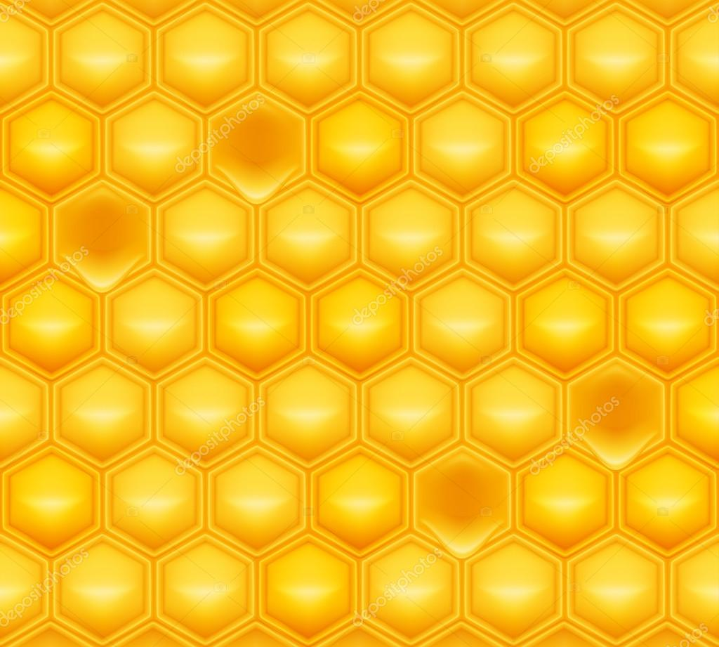 Honeycomb, vector  Stock Vector #12759925