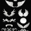 Design elements with wings, high quality 10eps — Vector de stock #12822849