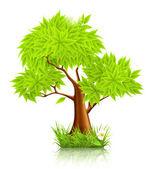 Green Tree, 10eps — Stock Vector