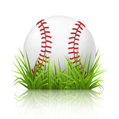 Baseball on grass, 10eps — Stock Vector