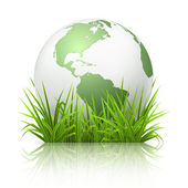 Globe on grass, 10eps — Stock Vector