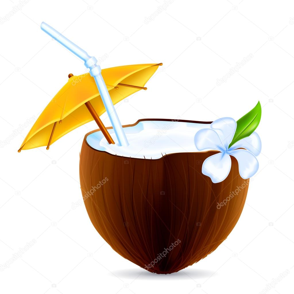 Coconut Cocktail, vector — Stockvectorbeeld #12824464