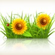 Sunflowers in grass, vector — Stock Vector