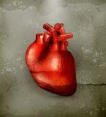 Mänskliga hjärtat, gammaldags vektor — Stockvektor
