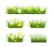 Grass set — Stock Vector