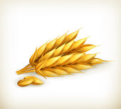 Wheat, vector icon — Stock Vector