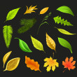 Leaf collection, on black vector — Stock Vector