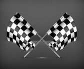 Two crossed checkered flags, vector — Stok Vektör