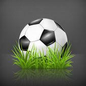 Soccer ball on grass, 10eps — Stock Vector
