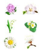 Spring flowers vector set — Stock Vector