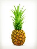 Ananas vector — Stockvector