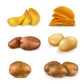 Potatoes vector set — Stock Vector