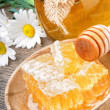 Honey pot and comb — Stock Photo