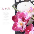 Spa setting with purple orchid and candle — Stock Photo