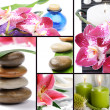Royalty-Free Stock Photo: Spa concept. Collage