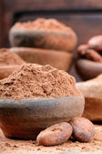 Cocoa powder and beans — Stock Photo