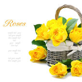 Freshly cut yellow roses in a rustic basket — Stock Photo