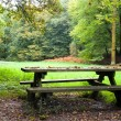 Picnic place in forest — Lizenzfreies Foto