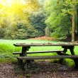 Picnic place - Stock Photo