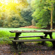 Stock Photo: Picnic place