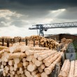 Stock Photo: Sawmill (lumber mill)