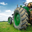 Old green tractor — Stock Photo