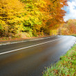Road at autumn — Stock Photo