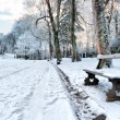 Bench in a winter park - Stock Photo