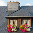 Foto Stock: Windows on rooftop