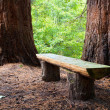 Stock Photo: Wood bench