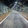 Stock Photo: Abandoned tunnel