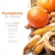 Stock Photo: Pumpkins and fall vegetables