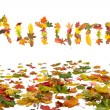 Autumn leaves — Stock Photo #12728042