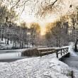 Wooden bridge under snow — Stock Photo