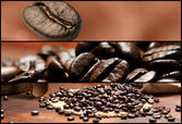 Banners - Coffee — Stock Photo