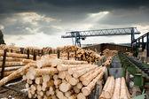 Sawmill (lumber mill) — Stock Photo