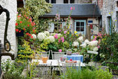 Vintage backyard — Stock Photo