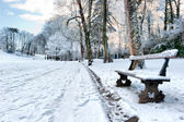 Bench in a winter park — Stock Photo