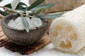 Natural sponge, sea salt and olive soap — Stock Photo