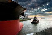 Het schip in de haven — Stockfoto