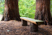 Wood bench — Stock Photo