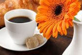 Morning coffee and freshly cut flower — Stock Photo