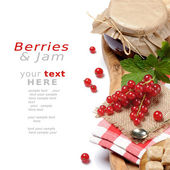 Set with redcurrant jam — Stock Photo
