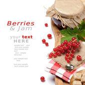 Set with redcurrant jam — Stock Photo